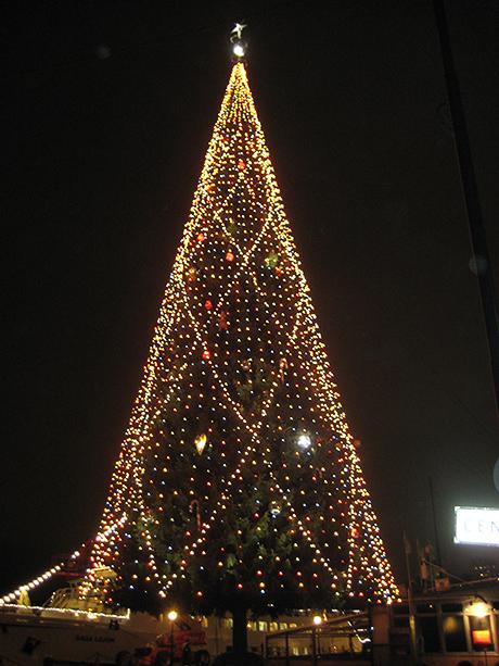 världens högsta julgran